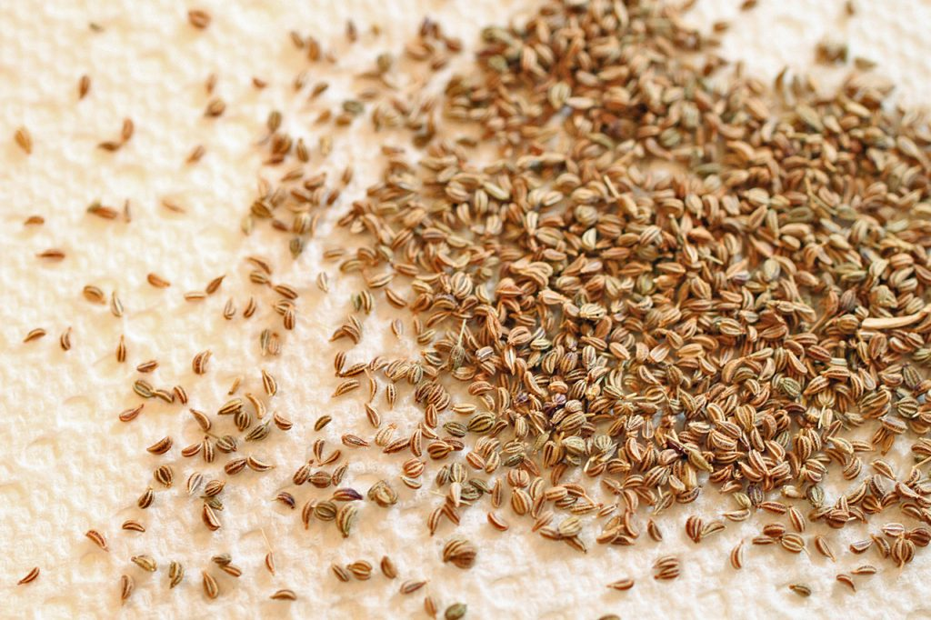Ajwain for Weight Loss - How to Lose Weight with Ajwain Water