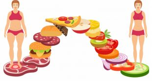 Diets to Lose Weight Fast - Weight Loss Diet