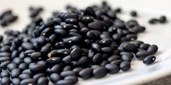 Black Beans for Weight Loss - 15 Healthy Foods That Make You Feel Fuller for Longer