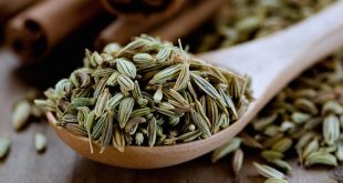 Fennel Seeds for Weight Loss - How to Lose Weight with Fennel Seeds