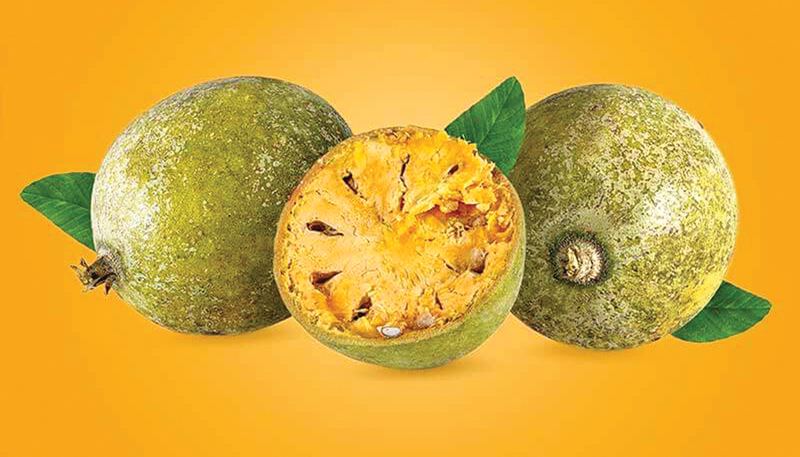 Bael Fruit - Instant Indian Home Remedy for Constipation