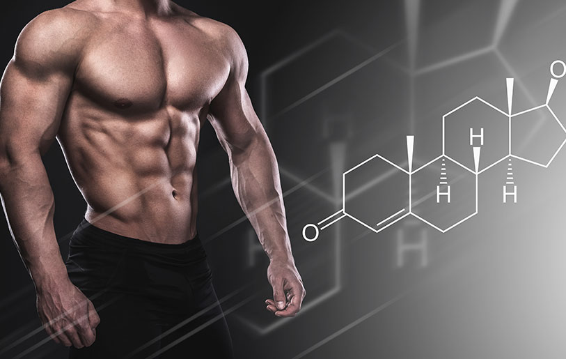 Best Testosterone Boosters For Muscle Gain