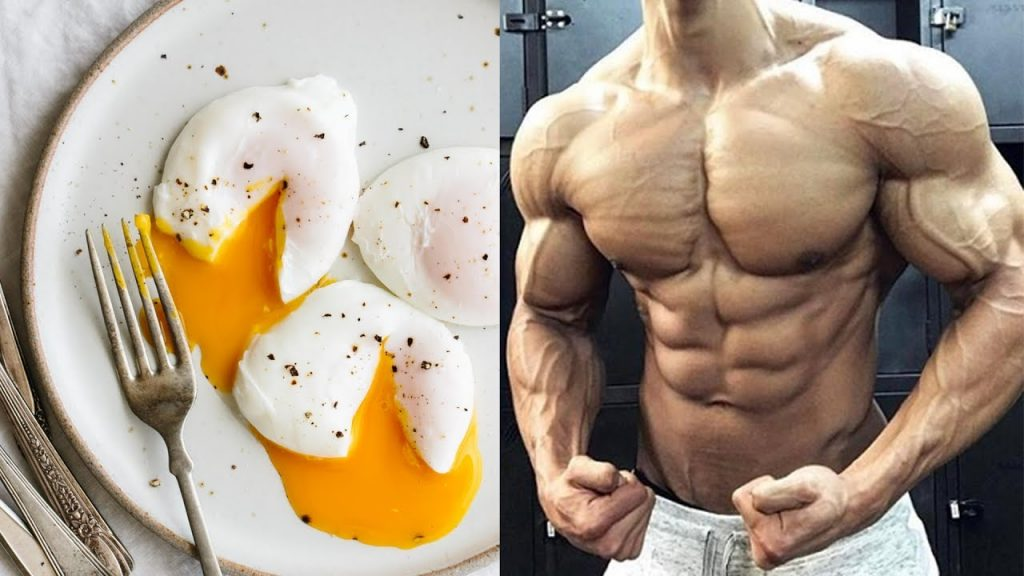Eat Eggs, Eggs, Eggs and Lots of Eggs