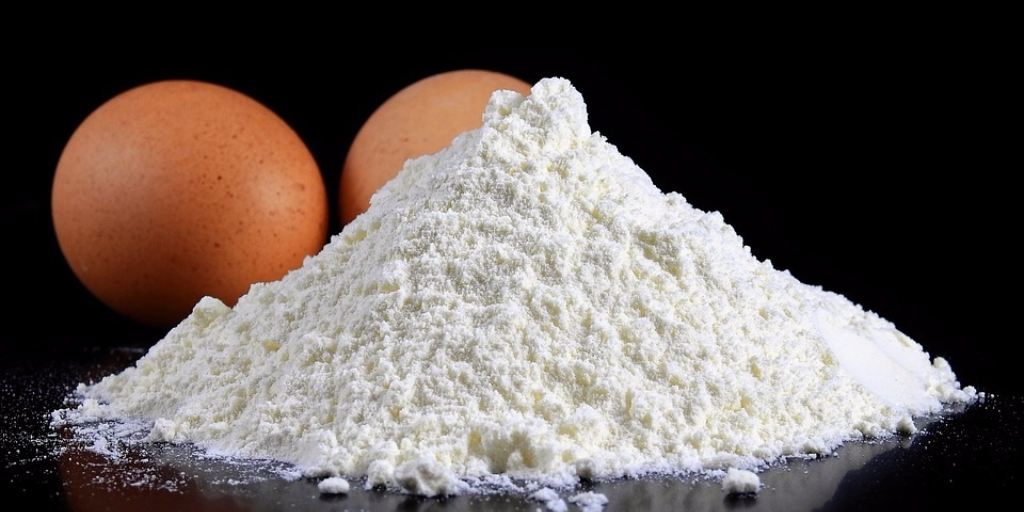 Egg White Protein - Best Protein Powders for Women